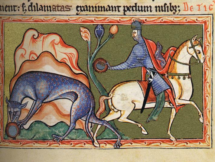 Image of Ashmole Bestiary depicting a knight on horseback and a dog-like dragon.