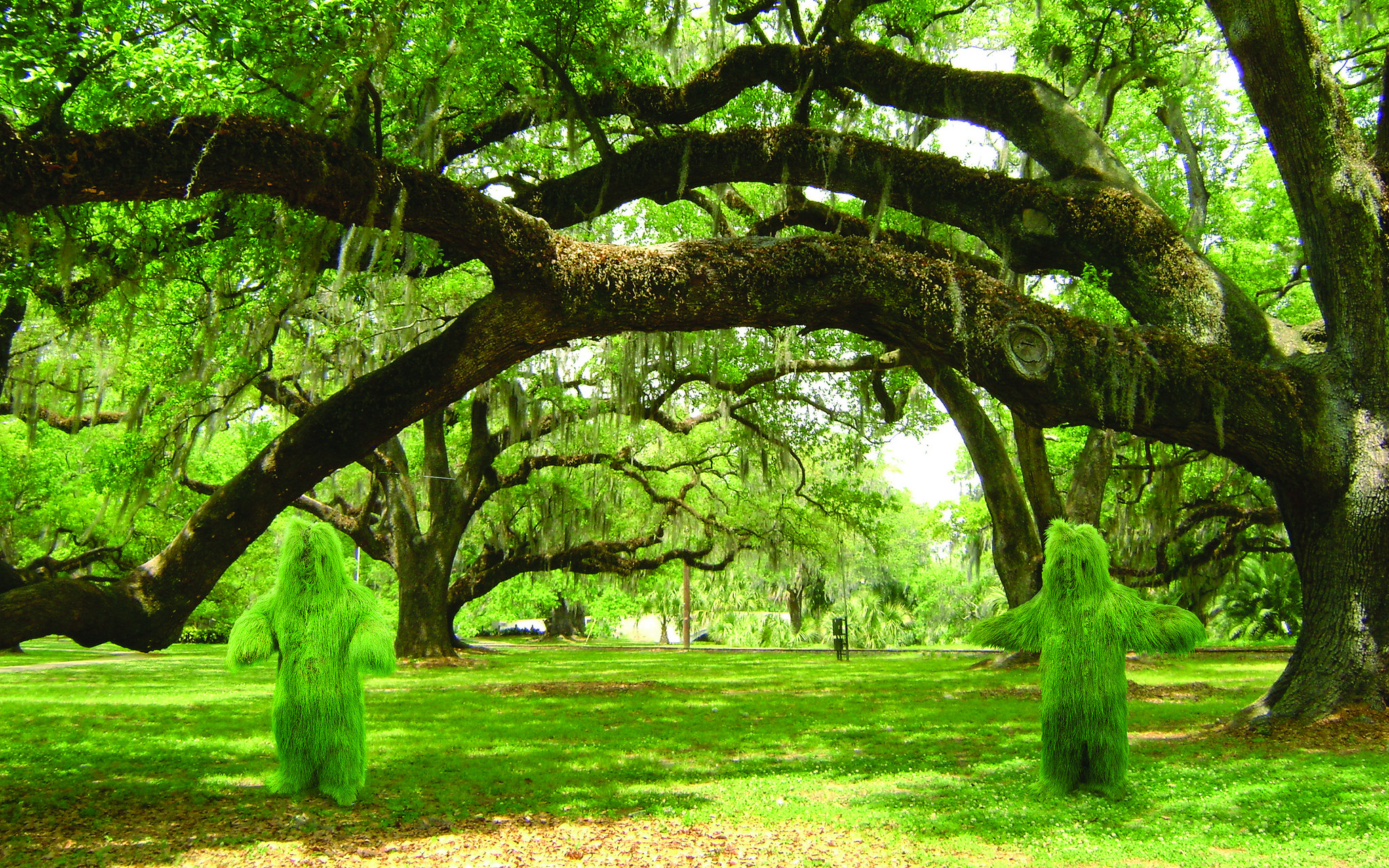 Figures made from grass appear to grow from the ground beneath an old, arched, tree branch.