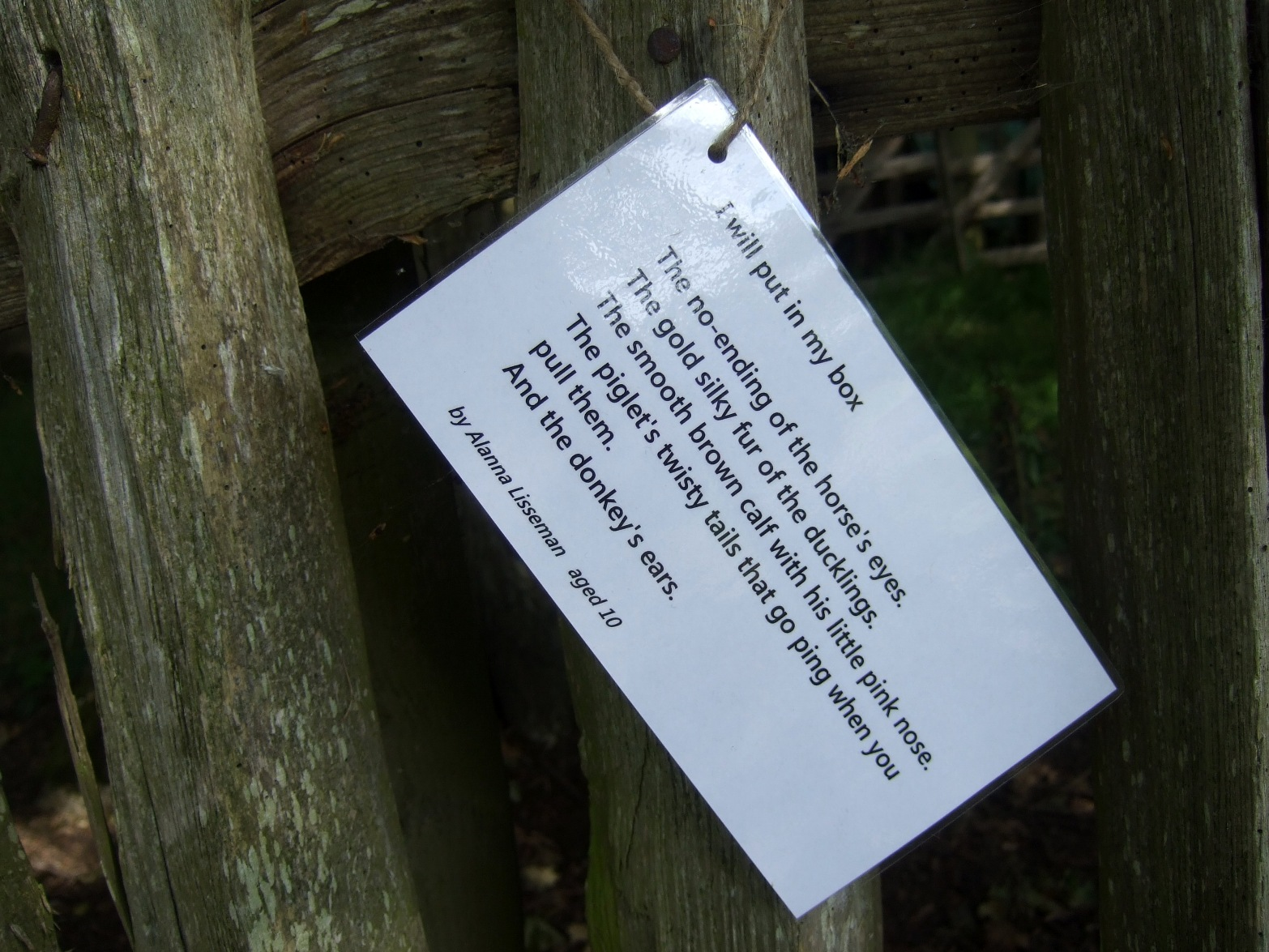 A laminated poem hanging from a fence.