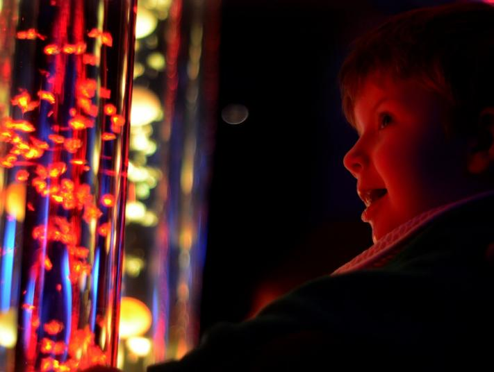 A young boy looks at a tank of bubbles in a sensory room.